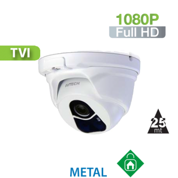Cámara Domo IR HD-TVI 1080P HomeSys by Avtech (DGC1104)