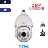 Cámara PTZ 30X IR 100mts IP 2MP Dahua (SD6C230SN-HN)